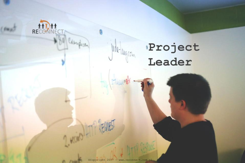 Zdjecie RECONNECT - Project Leader - strona www